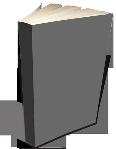 3D-paperback--Blank-388x500